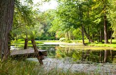 A 3-acre pond with an island, that Montoya created by damming the brook on his property, is more like a lake and is the central feature of t...