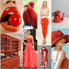 """Next to black and white, red is is my favorite colour to wear... ? // Polish blogger Maria analyses shades of red right for each season type: TOMATO RED """"For Light Spring, True Spring, Clear Spring, True Autumn. Perhaps for Deep Autumn."""" My Warm Spring?/Warm Autumn? mother looks great in this colour)."""