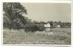 Essex postcard St Osyth The Mill from the meadows Saints, Outdoor, Ebay, Outdoors, Outdoor Games