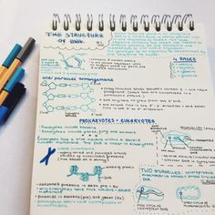 Okay, take a calming breath.   Community Post: 18 Gorgeous Study Notes That Should Be Framed As Art