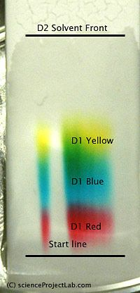 thin layer chromatography lab report