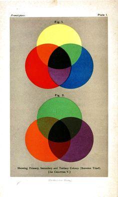 Color - Multiple - Color dyes