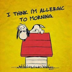 42 ideas for funny good morning quotes humor hilarious sleep Snoopy Quotes, Me Quotes, Funny Quotes, Couple Quotes, Happy Quotes, Humour Quotes, Hilarious Sayings, Funny Shit, The Funny