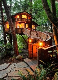 Tree House. Seattle, WA.