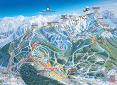 Telluride, Colorado Trail Map I've only been here in the summer but it looks like an incredible place to ski. Colorado Ski Resorts, Colorado Trail, Telluride Colorado, Colorado Snowboarding, Jackson Hole Mountain Resort, Ski Vacation, Trail Maps, Snow Skiing, Alpine Skiing