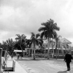 Rod & Gun Lodge - Everglades City, Florida 1970
