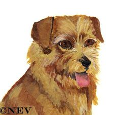 Pictures Norfolk Terrier Aceo Print Toy Dog Art From Acrylic Painting Card 2 Norfolk Terrier Puppies, Terrier Dogs, Terriers, Happy Dogs, Dog Art, Dog Toys, Watercolor Paper, Original Paintings, Teddy Bear