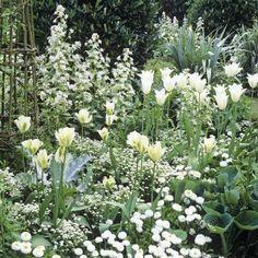 MazzTuinmeubelen-- #Inspiratie #Bloemen #Tuin #Beplanting #Style #Cottage #Garden #Home #DIY