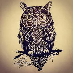 Tribal owl sitting on a branch