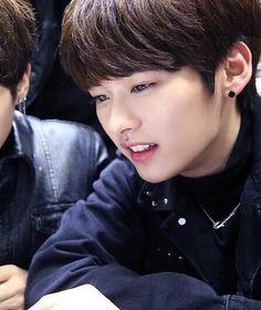 STRAY KiDS   Lee Minho
