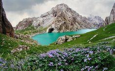 Scarica sfondi rocce, lago di montagna, lago smeraldo, fiori viola, montagne, szmaragdowe lago, gori
