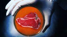 Científicos aseguran que comeremos carne sin matar animales - Sabías.es