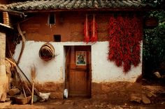 Traditional Chinese home and the residents loves chili peppers.
