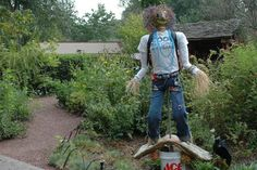 Scarecrows for Garden Ideas How To Make A Scarecrow For Your Garden Scarecrows for Garden Ideas. Scarecrows were first invented as a way to keep birds, especially crows, out of gardens and fields. Make A Scarecrow, Scarecrow Crafts, Halloween Scarecrow, Scarecrow Ideas, Kew Gardens, Unique Gardens, Outdoor Gardens, Scarecrows For Garden, Atlanta Botanical Garden