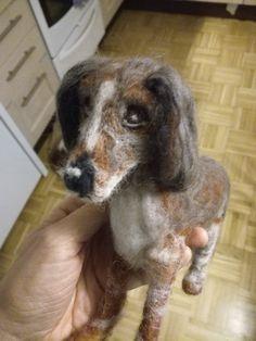 Kaunis koira! Sain hänelle ilmeikkäät silmät. Tilaustyö jälleen. Dogs, Animals, Animales, Animaux, Pet Dogs, Doggies, Animal, Animais