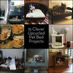Round Up: 15 Furniture Turned Pet Bed Projects Diy Dog Bed, Dog Beds, Cat Run, Diy Stuffed Animals, Dog Houses, Cat Toys, Animal Projects, Animal Crafts, Pet Dogs