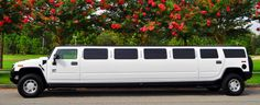 An exceptional New Orleans Limo service provider. Book a sedan, SUV, limo, sprinter or party bus. Wedding Limo Service, 8th Wedding Anniversary Gift, Wedding Officiant, Wedding Vows, Hummer H2, Party Bus, New Orleans Wedding, Wedding Website, Luxury Cars