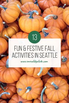 Fall in Seattle is one of the best seasons. From fall colors in Seattle, pumpkin patches, corn mazes, u-pick apple orchards, and fall getaways in Washington state, here are all the best things to do during fall in Seattle.