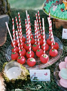 Delicious and colorful little treats to complement a unique and magical baptism! #eliteeventsathens #inthewoods #fairytale #story #magic #baptism #christening #eventplanning #decoration #athens #greece