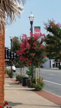 Pageland, SC prepping for Watermelon Festival