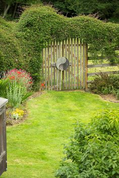 A clematis vine grows across the top of a wooden gate and fence in a Pacific Northwest garden