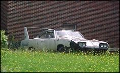 Superbird.  Disgraceful to let this fine car rot.