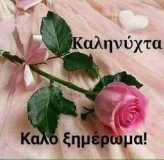 Good Morning Snoopy, Amazing Quotes, Good Night, Rose, Flowers, Plants, Gifs, Fashion, Moda