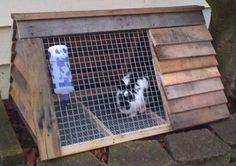 Another Rabbit Hutch idea