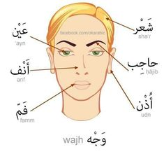 Arabic More #learnarabic