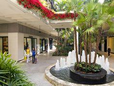 What to Do in Miami | Miami - DailyCandy