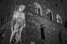 Estatuas de la Signoría