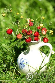 Snítka lesních jahod v keramické vázičce s tradičním českým dekorem; Wild strawberry in a small vase Fresh Fruit, Strawberry, Cooking, Kitchen, Strawberry Fruit, Strawberries, Brewing, Cuisine, Cook
