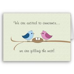 Twins Pregnancy Announcement (Filling the Nest) Cards
