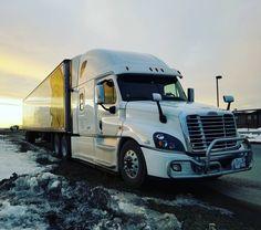 #freightliner #longhaul #truckload #truck #truckdriver #truckdriving #centuriontrucking #canadatrucks #truckloadtransportation #supplychain #cascadia #alberta #albertacanada #explorecanada