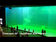 "TimeLapse 30"" : AquaPlanet JEJU Preview | 타임랩스 : 미리보는 동양최대 수족관 아쿠아플라넷 제주"
