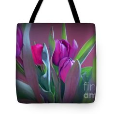 #tulips #floral #flowers #spring #nature #garden #purple #vibrant #photography #KayNovy #kkphoto1