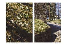 Sacro Monte di Orta www.duepuntiwedding.it