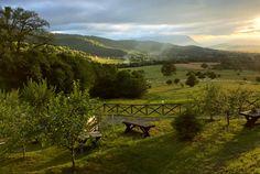 Green Cottage - O cabană superbă, chiar în grădina Carpaților - Wildventure Romania, Montana, Cottage, Green, Nature, Travel, Outdoor, Park, Cabin