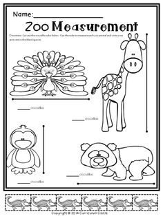 Go Math Kindergarten Lesson Plans Fresh Sub Plans Zoo theme Math & Literacy Activities Substitute Preschool Zoo Theme, Preschool Lessons, Preschool Classroom, Kindergarten Worksheets, In Kindergarten, Classroom Themes, Preschool Plans, The Zoo, Crocodile