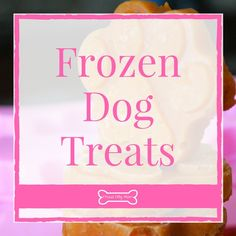 Help your pooch beat the summer heat with these DIY frozen dog treats! These homemade dog treat recipes are simple and healthy.
