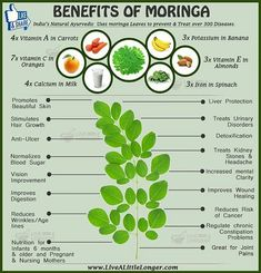 Miracle Diets - Benefits Of Moringa For More www. - The negative consequences of miracle diets can be of different nature and degree. Herbal Remedies, Health Remedies, Natural Remedies, Healing Herbs, Natural Healing, Natural Medicine, Herbal Medicine, Health And Nutrition, Health And Wellness