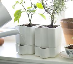 These self-watering SÖTCITRON pots mean you can leave home for a few days, no neighbour needed