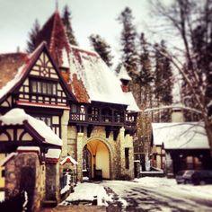 Some Romanian Stuff Peles Castle, Renaissance Architecture, Beautiful Castles, Bucharest, Romania, Travelling, Buildings, Cabin, Holidays