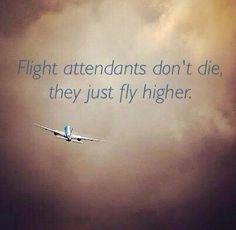 Flight Attendant Dont Die Humor Aviation Airplane Travel