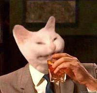 quickm Don Draper mammal vertebrate cat nose head small to medium sized cats Cute Memes, Dankest Memes, Funny Memes, Funny Cats, Funny Animals, Cute Animals, Reaction Pictures, Funny Pictures, Sad Cat