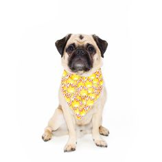 """""""Express yourself! Which emoji do you prefer? Now you don't have to choose with this Emoji Madness Pet Bandana! Keep It Cleaner, Bandana, Emoji, Dog Food Recipes, Your Pet, Vibrant, Colours, Cool Stuff, Pets"""