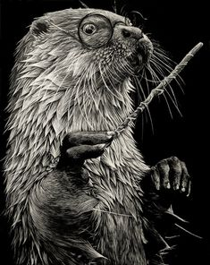 scratchboard illustration - Google Search Shauna Fannin