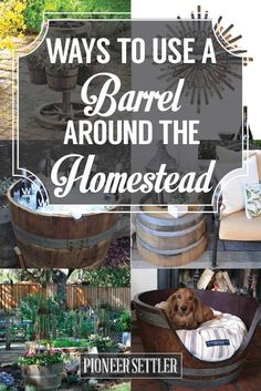 21 Ways to Reuse A Wine Barrel On Your Homestead | Awesome DIY Projects for your Home by Pioneer Settler at http://pioneersettler.com/wine-barrel-ideas/