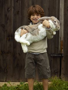 Now this is a bunny!