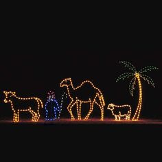 Holiday Shepherd & Animal Light Display - Yard Sculptures. Top quality Holiday Nativity Light Display perfect for your home, Church, office or town. This 5 piece light sculpture display includes the Shepherd Boy, the Ox, Camel, Sheep and Palm Tree. This set can be added to Item 71822 to complete the Nativity. Professionally designed and built by hand using only the highest quality materials, including commercial-grade C7 LED lights. $2,799.00
